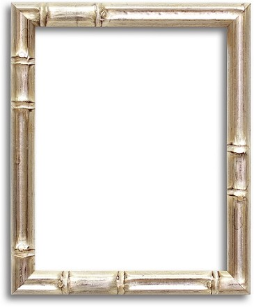 6S - Silver Bamboo Finish Framing